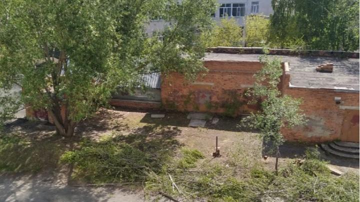 Вокруг курганской школы вырубят деревья, чтобы починить забор