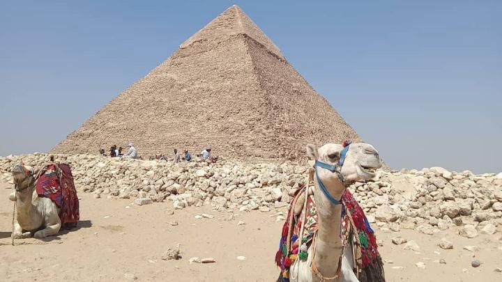 В Египет через Каир: что предлагает страна фараонов российским туристам и сколько это стоит