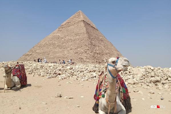 Египет у многих ассоциируется с бескрайней пустыней, пирамидами и верблюдами — этого там и правда в достатке