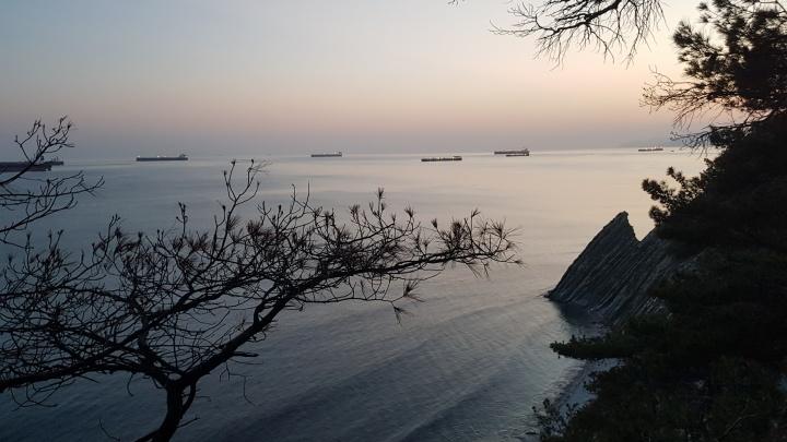 На Черноморском побережье в выходные наконец без дождей, будет до +36 °C
