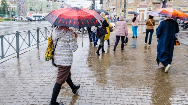 В Пермском крае на неделе ожидается дождливая и холодная погода