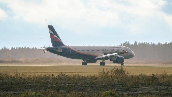 Стало известно, какие авиакомпании реже всего задерживают рейсы из Самары