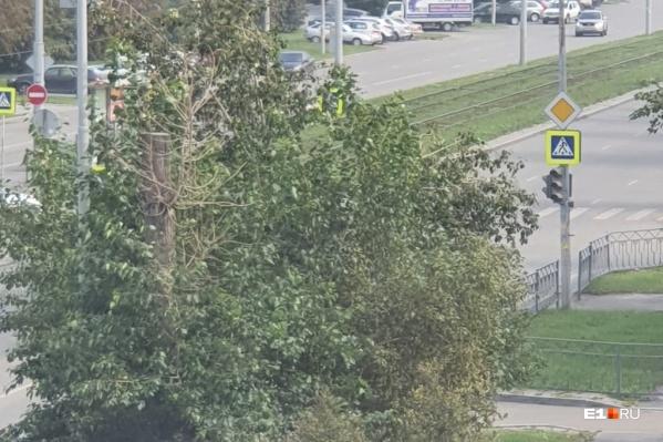 Это фото сделано на улице Уральской, там не работают светофоры