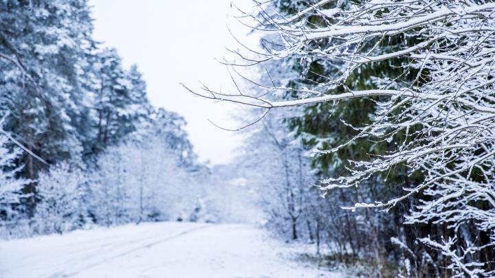 «Это надолго»: на Ярославль идут 30-градусные морозы