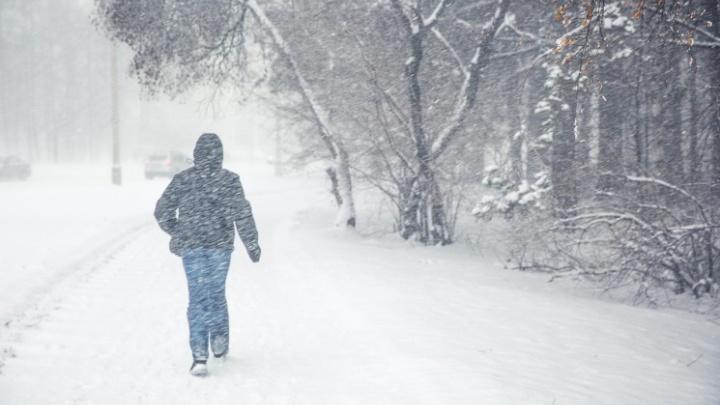 Потеплеет до -11градусов: в Новосибирск идут снегопады и метели