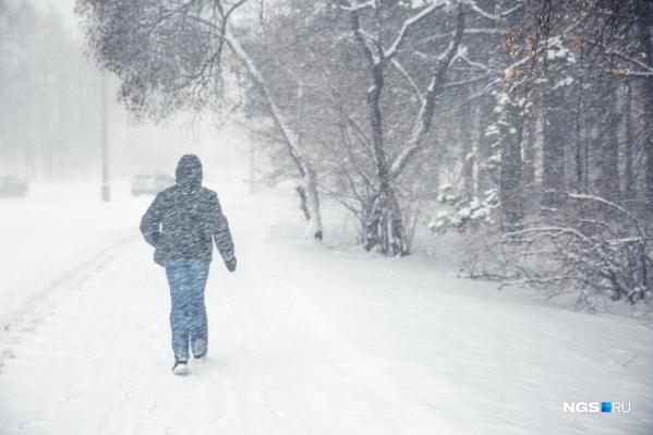 В ближайшее время Новосибирск заметет снегом