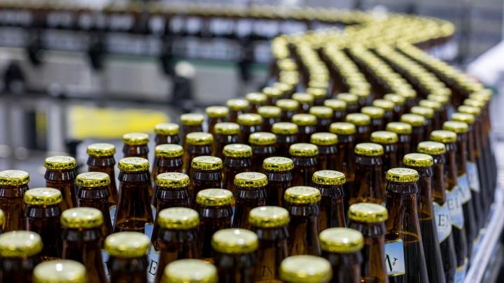 «Драматичное поднятие цен»: красноярский пивовар Бриман прогнозирует подорожание пива на 30%
