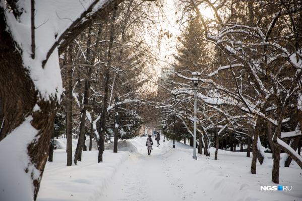 В этом году зима в Новосибирске морозная