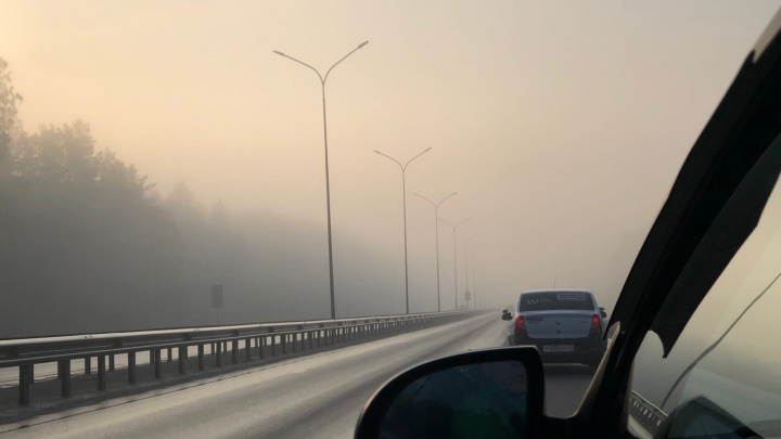 В Международный день чистого воздуха в Тюмени витает запах гари — все дело в лесных пожарах (опять)