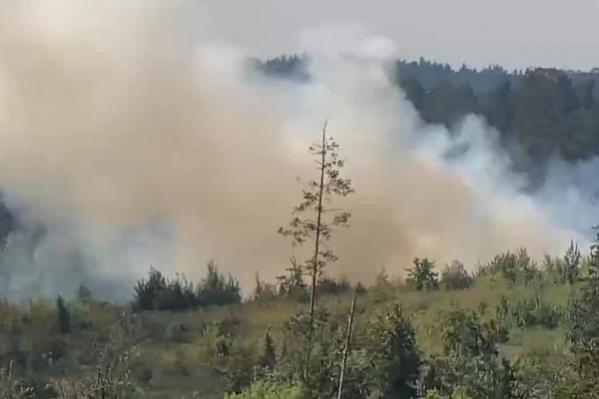 Огнем охвачены 6 гектаров леса