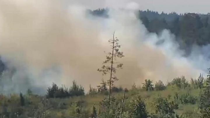 В Тольятти загорелись несколько гектаров городского леса