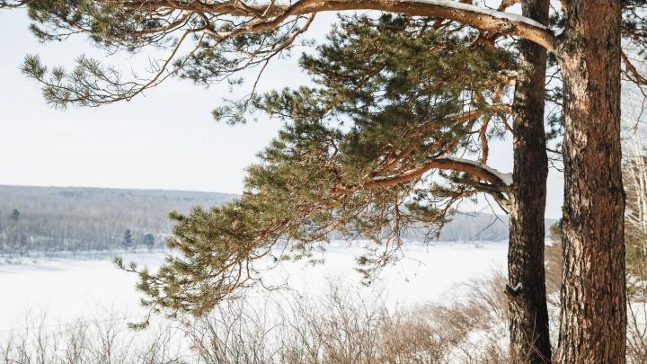 В Кузбассе ожидается похолодание: изучаем прогноз синоптиков на неделю