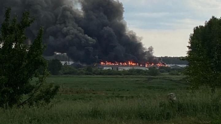 Под Челябинском горит еще одно предприятие владельца Среднеуральской птицефабрики