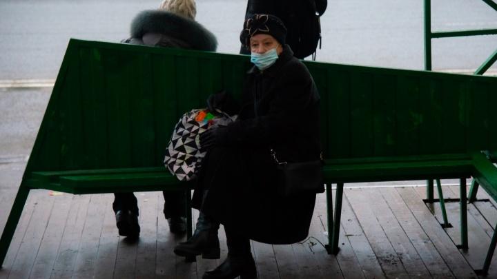 Коронавирусные ограничения в Архангельской области продлили до 26 января