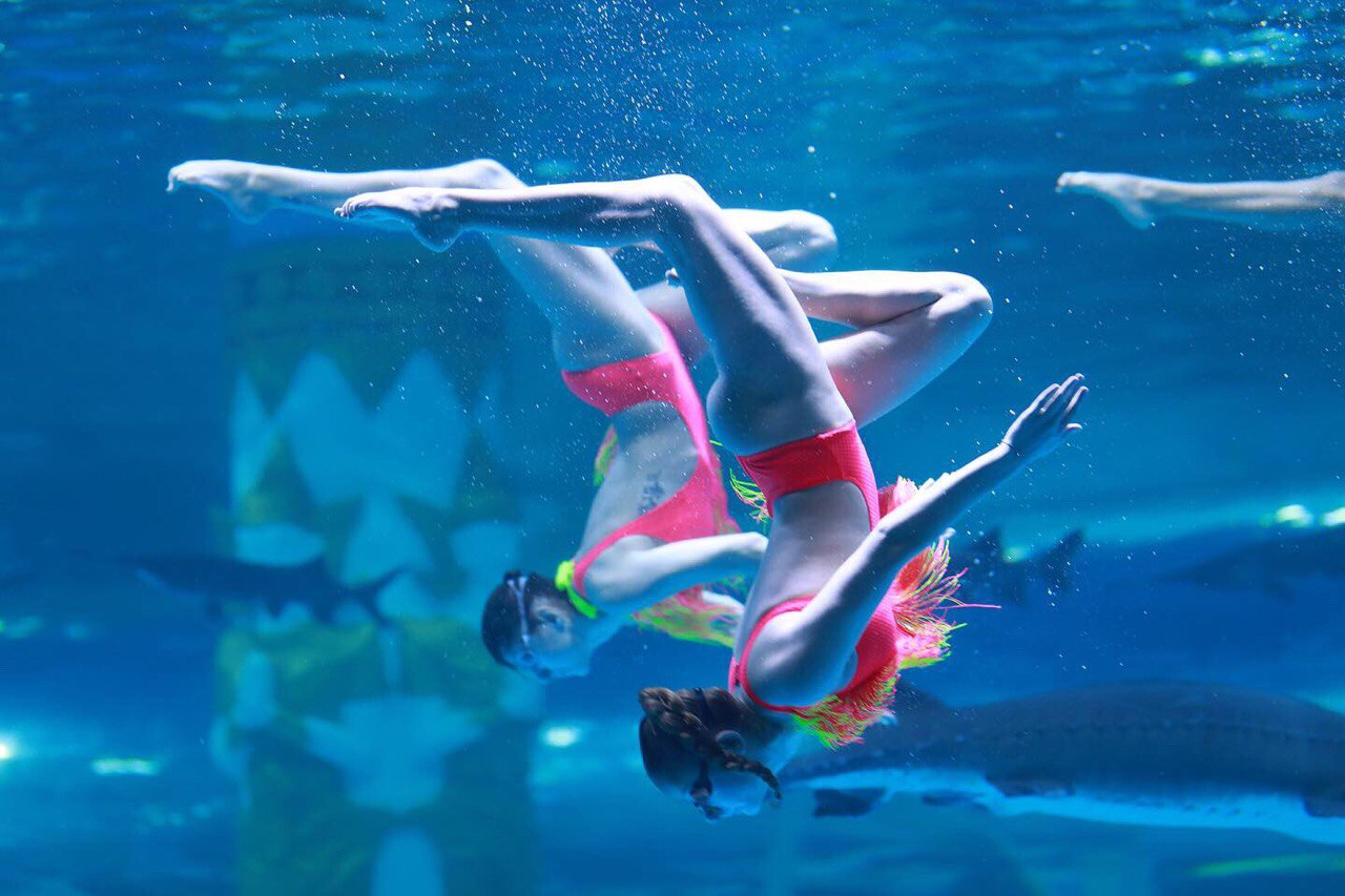 Если работать хочет пловец, который не занимался синхронным плаваньем, — этому его учат уже на месте