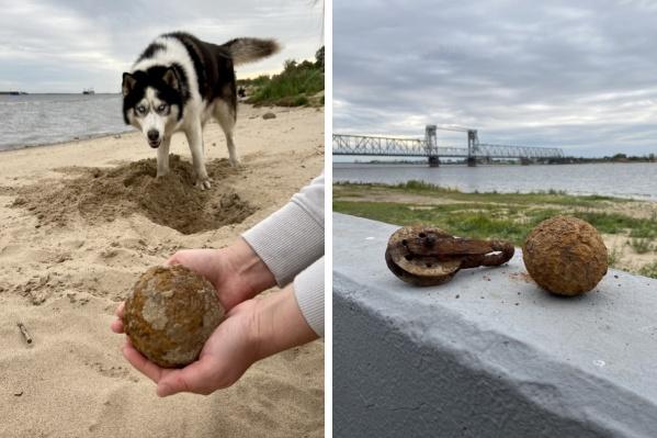 Металлические находки выкопали на берегу Северной Двины