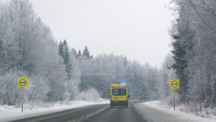 В Пермском крае погибла сотрудница леспромхоза — ее куртку затянуло в конвейер