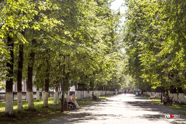 На Первомайской улице благоустроят и бульвары