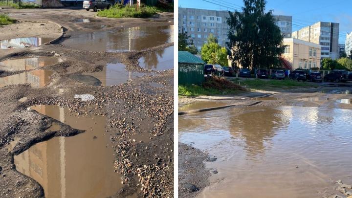 «Та еще грязная помойка»: ярославцы назвали самый нечистоплотный район города