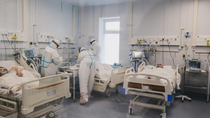 Почти рекорд: за сутки в ХМАО 228 новых заболевших, 9 человек скончались