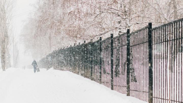 Прошедший в регионе снегопад на отдельных территориях оказался самым масштабным за 58 лет
