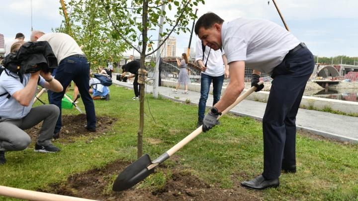 ВИПы открыли на набережной в центре Екатеринбурга сад трав и новую спортплощадку. Губернатор даже отжался на брусьях