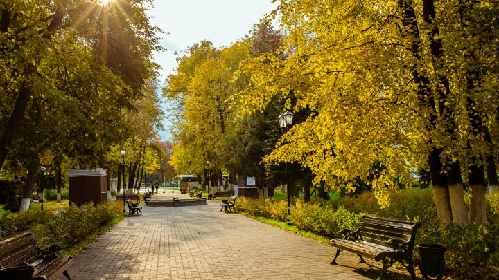 В Ярославскую область придет осень: синоптики рассказали о погоде на неделю