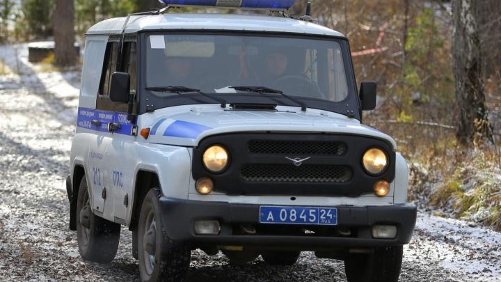 Красноярские депутаты предложили выделять землю для полицейских, служащих в сельской местности