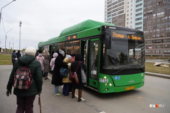 Автобусы из Компрессорного в центр — это передвижные спальни. В том смысле, что за время в пути в них можно неплохо выспаться