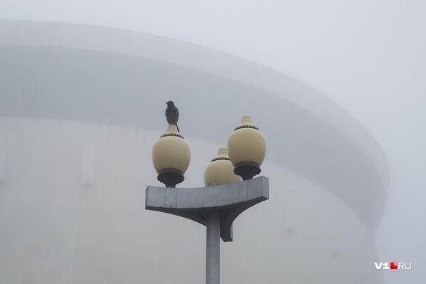 Дымка в воздухе Волгограда оказалась пылью из Казахстана