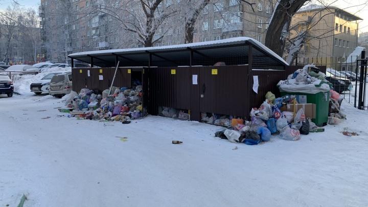 Новосибирск завалило мусором после Нового года — его никто не вывозит