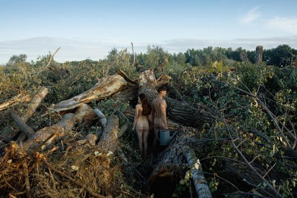 Съемку провели среди вырубленных пойменных деревьев