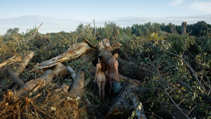 «Это не проблемы, а зловещие фантазии»: продюсер из Волгограда оценил обнаженную фотосессию в вырубленных дубах