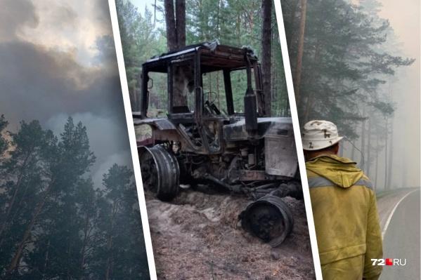 Тракторист попал в зону очага, где его окружил огонь. Он вылез из трактора, спрятался, а затем обгоревший вышел из лесу