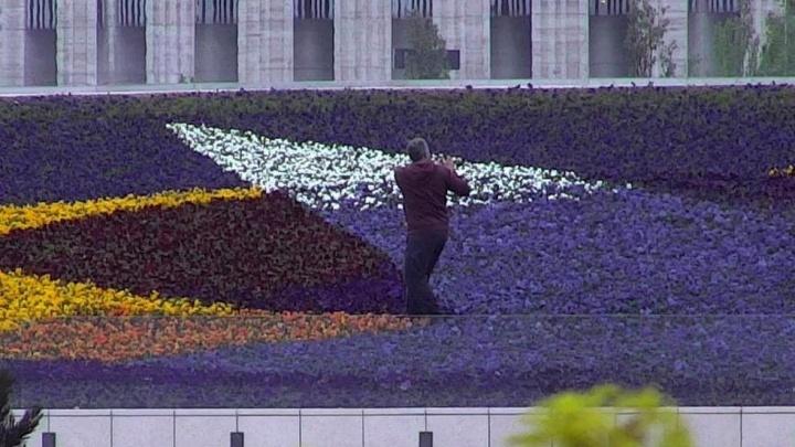 Парк «Краснодар» решил судиться с теми, кто портит цветы в клумбах
