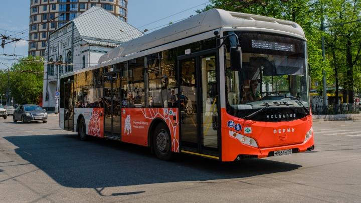 В Перми сделают бесплатный проезд для школьников начальных классов