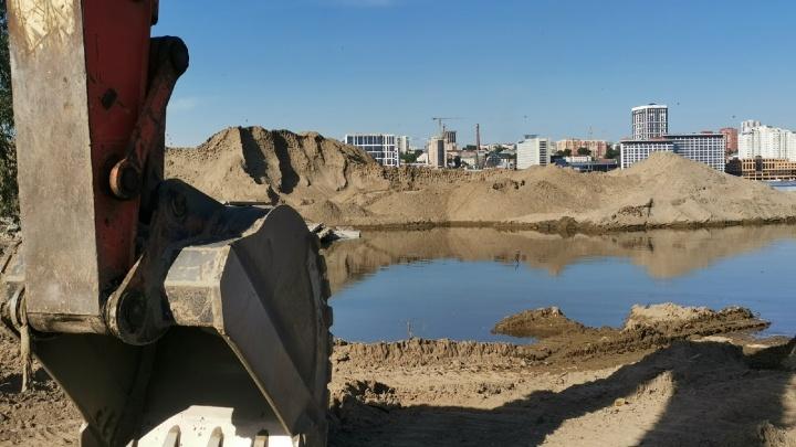 Возле нового ЛДС сотни ласточек поселились в огромном песчаном карьере, который хотели убрать с берега
