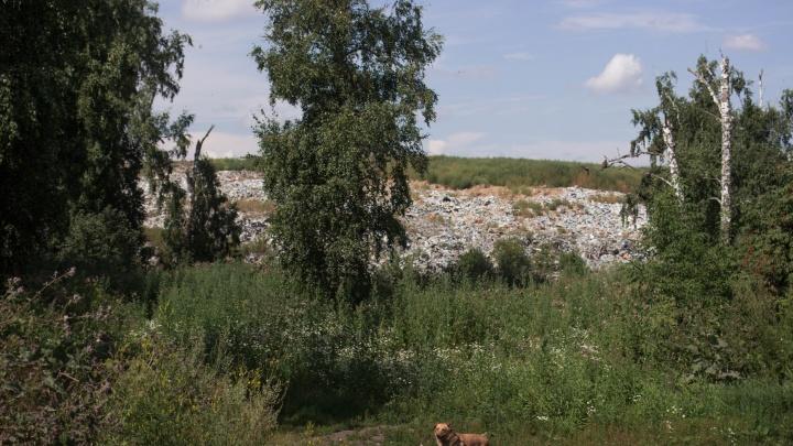 «Мы уже привыкли так жить»: как выглядит район, где дома соседствуют с гигантской свалкой и колонией (кадры с высоты)