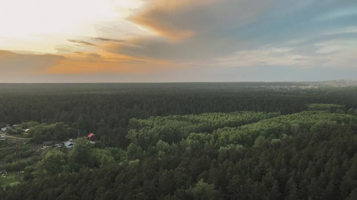 В Новосибирской области благоустроят 185 дворов и парков — на них потратят больше тысячи миллионов