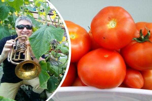 Николай Саидов — не только агроном, но и музыкант. Но мы у него попросили несколько советов именно по выращиванию овощей