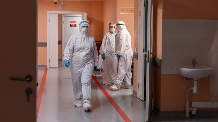 Почему в России не могут остановить эпидемию коронавируса? Отвечают инфекционисты и микробиологи