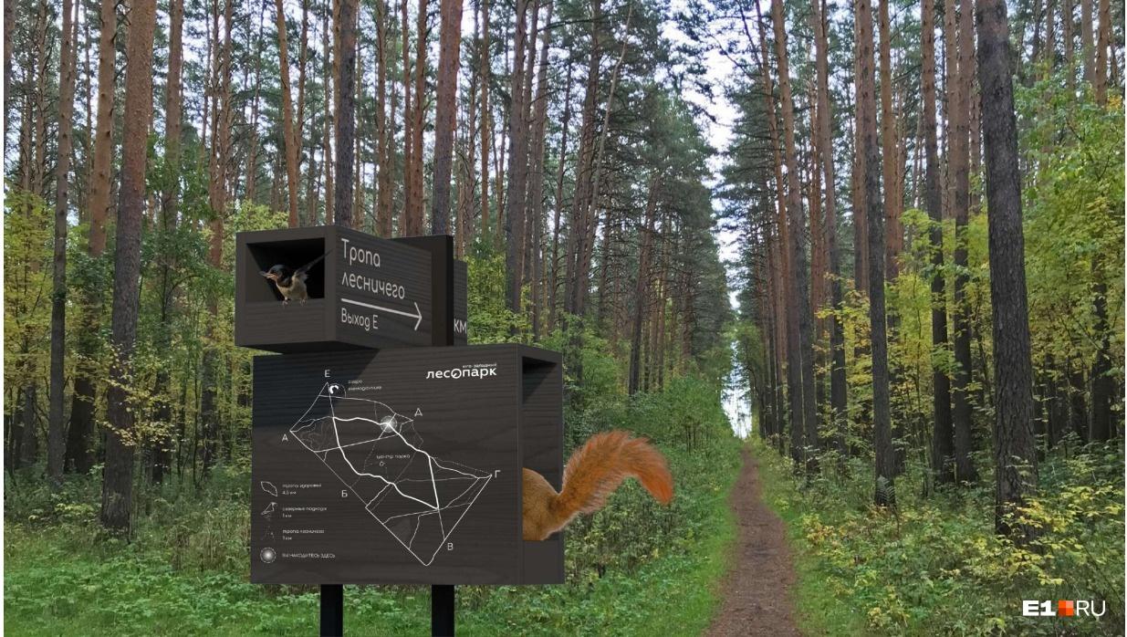 Стелы на маршрутах объединили с кормушками для птиц и белок