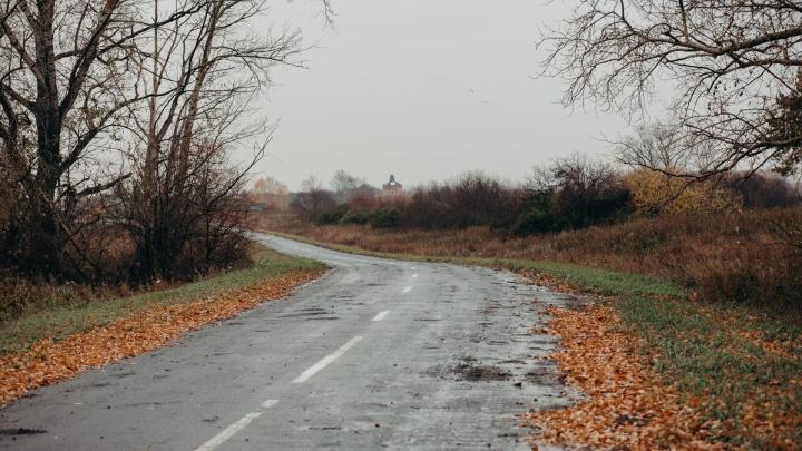 Тюменец схватил девушку на улице и потащил в кусты: изнасилование предотвратили очевидцы