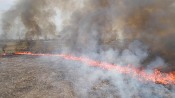 Огненная полоса: блогер снял с коптера горящую траву, которая подступает к Кинелю