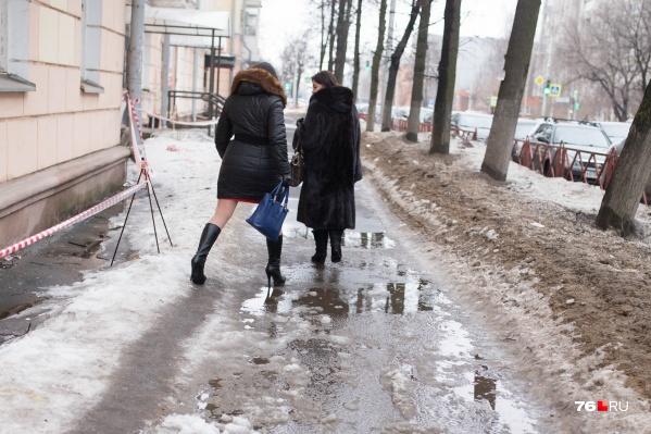 К концу недели в Ярославле будет мокро и слякотно