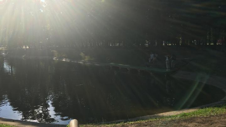В парке Гагарина ребенок упал в канал