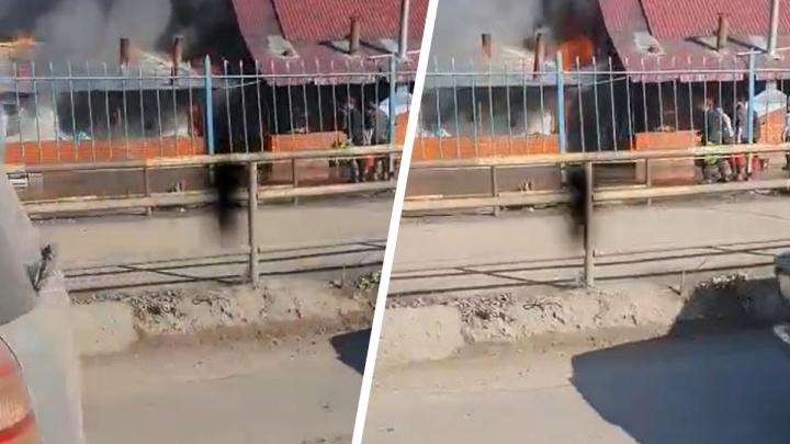 На Хилокской загорелись киоски общепита — огонь попал на видео