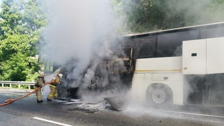 Автобусы с детьми столкнулись на трассе Джубга — Сочи. Пострадали 16 человек