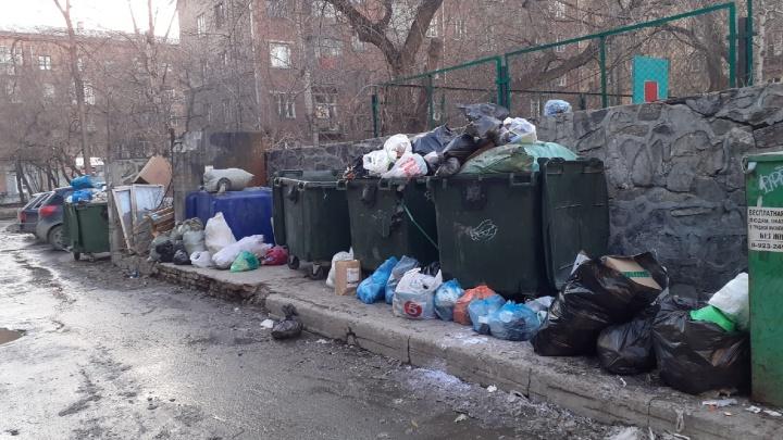 Мешают снег, припаркованные машины и ломающиеся мусоровозы: «Экология-Новосибирск» объяснила горы мусора во дворах