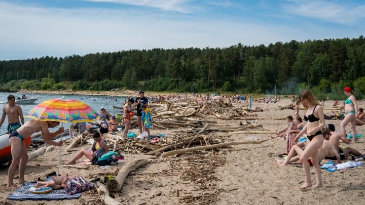 Мэрия Новосибирска решила забрать себе пляж Центральный — в прошлом году от него отказалось СО РАН